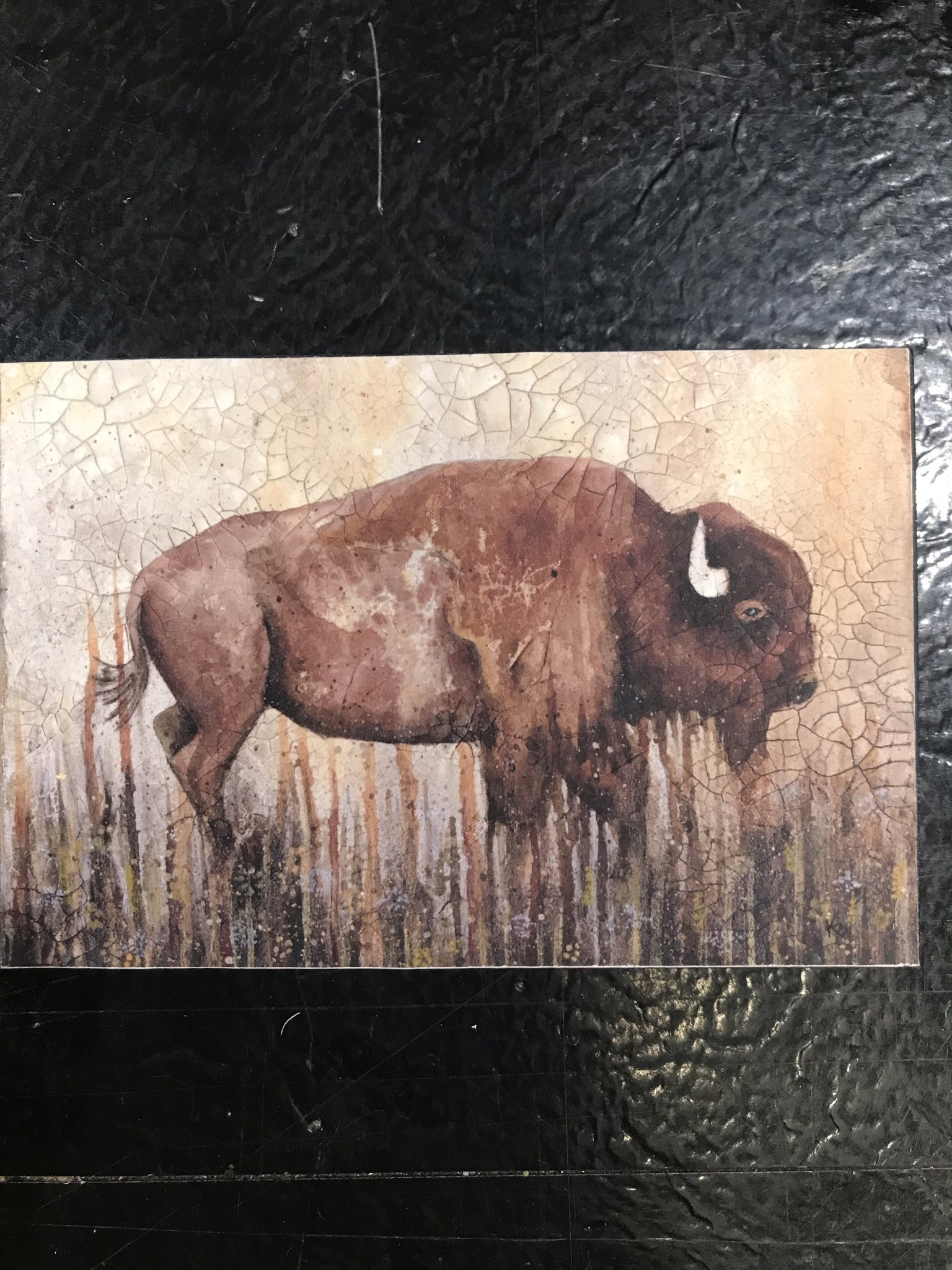 """fromvictoryroad """" Bison"""" fromvictoryroad 4x6 mounted print"""