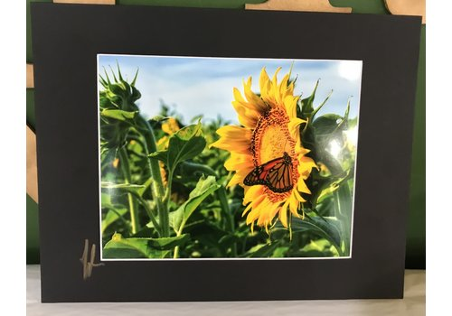 Drone-tography Drone-tography Sunflower #2 11x14 Print