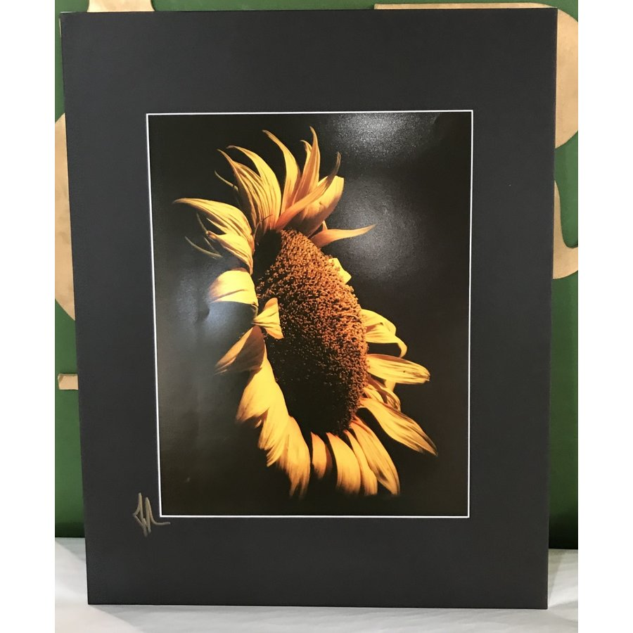 Drone-tography Sunflower #1 11x14 Print