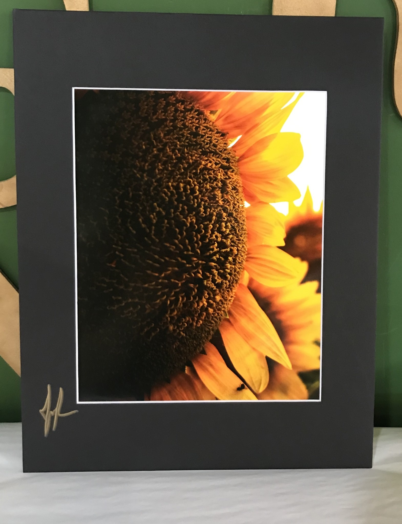 Drone-tography Drone-tography Up Close Sunflower 8x10 print