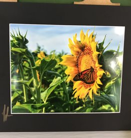 Drone-tography Drone-tography Sunflower Butterfly 8x10 print