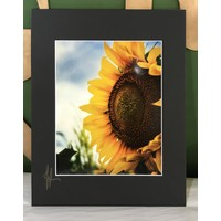 Drone-tography Sunflower #2 8x10 print