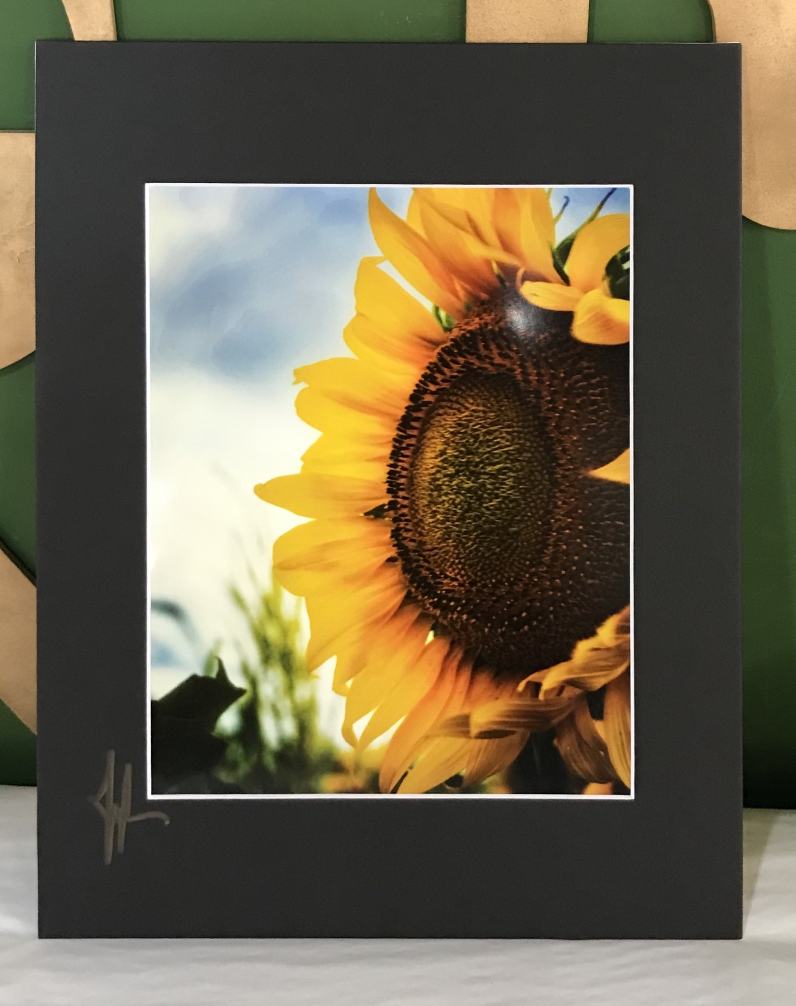 Drone-tography Drone-tography Sunflower #2 8x10 print