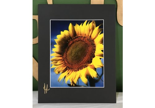 Drone-tography Drone-tography Sunflower #1 8x10 print