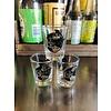 ICTMakers Assorted Wichita Kansas Shot Glasses