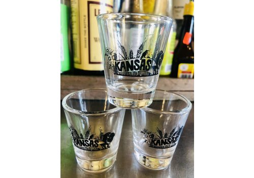 ICTMakers Assorted Wichita Kansas Shot Glasses