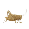 Creative Co-Op Resin Cricket w/ Gold Finish