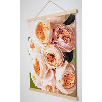 Pink Picasso Horizontal Painting Hanger