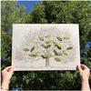 color box design Family Tree