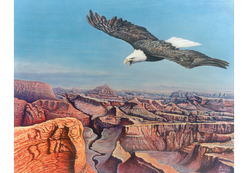 Nez Benson Bold Eagle