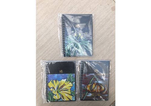 """Feather B Heather Byers Painted Sketchbook- 4""""x6"""" Spiral"""