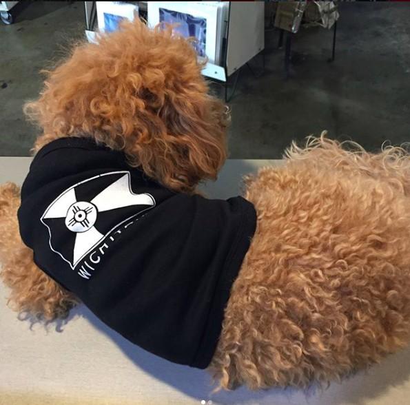 The Workroom ICT Dog Skin Tee