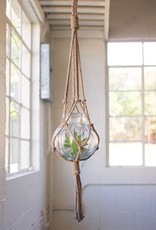 The Workroom Hanging Macrame & LG Glass Vase