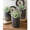Black and White Clay Planters