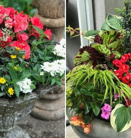 May 19th, Create A Summer Container