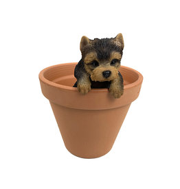 Hanging Yorkshire Terrier - Small