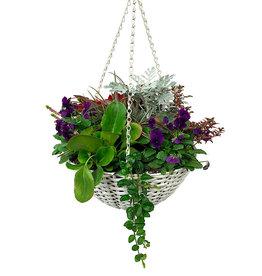 Hanging Garden 43