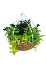 Hanging Garden 33