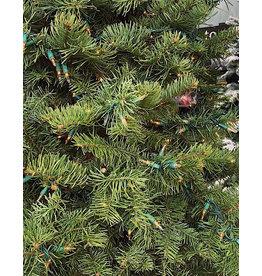 Christmas Tree Lighting Service