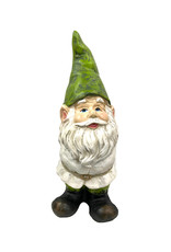 Garden Gnome With Green Hat