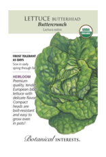 Lettuce Butterhead 'Buttercrunch' Seed Pack