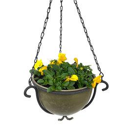 Hanging Garden 53