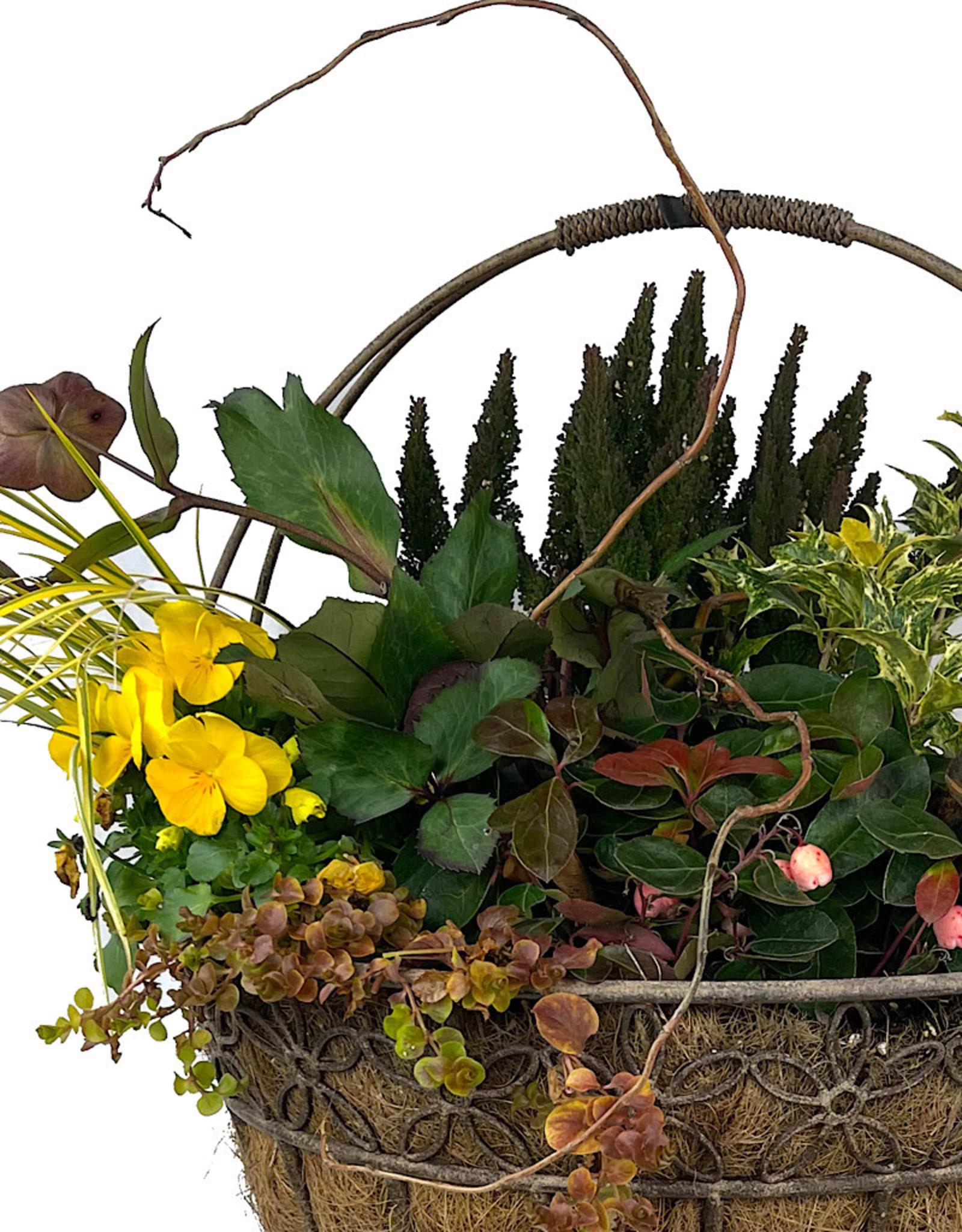 Hanging Garden 44