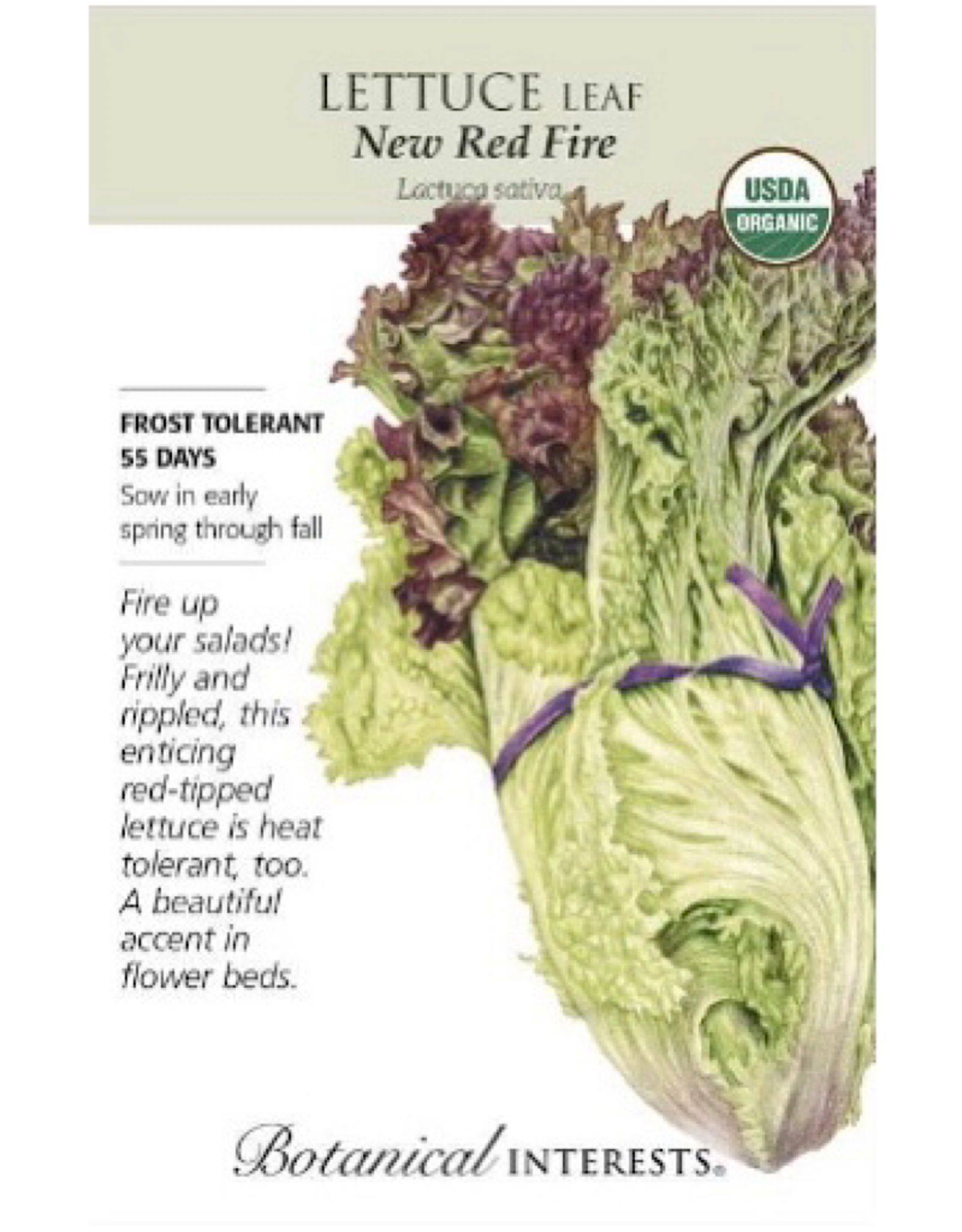 Lettuce 'New Red Fire' Seed Pack