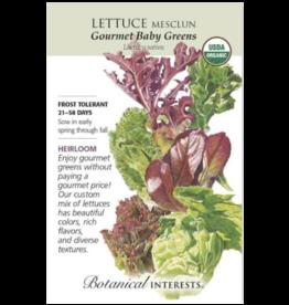 Lettuce Mesclun 'Gourmet Baby Greens' Seed Pack