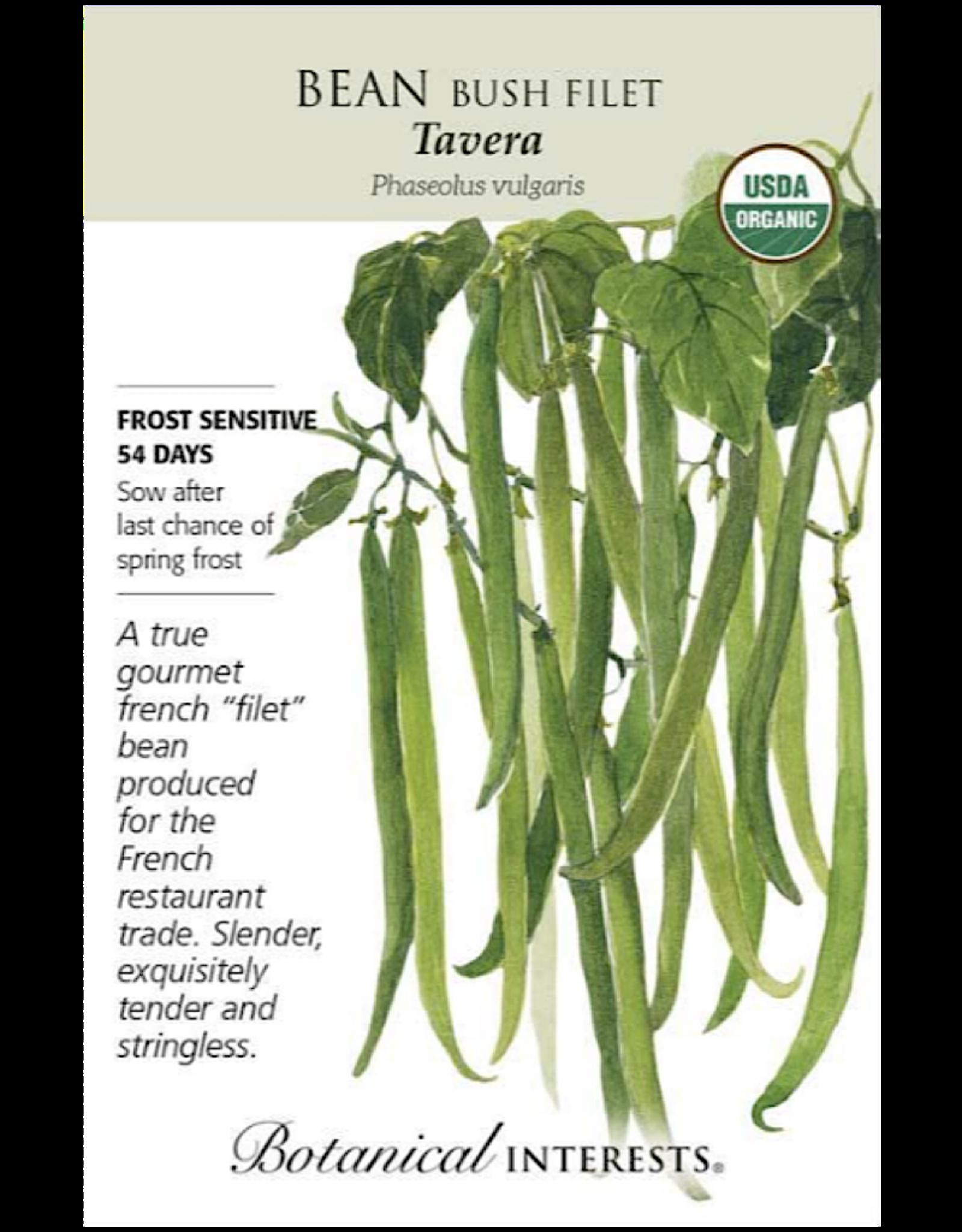 Bean Bush 'Tavera' Seed Pack
