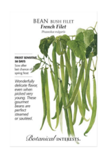 Bean Bush 'French Filet' Seed Pack