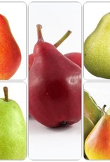 Pear Dwarf - 5 Way Combination Pre-Order