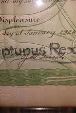 "Domain of Neptunus Rex Certificate, 22.75""x17.75"""