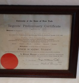 NY University Regents Certificate, Cherry Valley School District, 1891