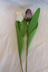 "14"" Single Tulip Stem"