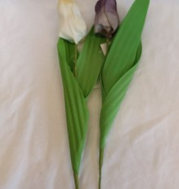 "14"" Single Tulip Stem"