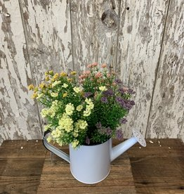 Enamelware Watering Can