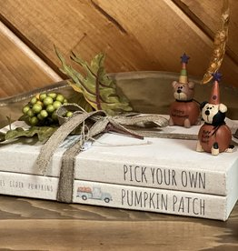 Pick Your Own Pumpkin Patch Book Stack