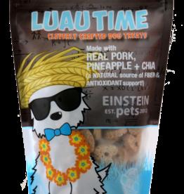Einstein Pet Einstein Pet Luau Time Dog Treats 8oz