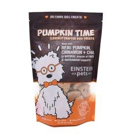Einstein Pet Einstein Pet Pumpkin Time Dog Treat