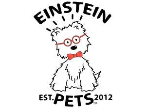 Einstein Pet
