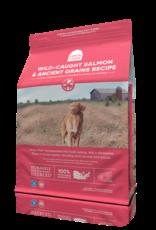 Open Farm Open Farm Ancient Grains & Wild-Caught Salmon Dog Food