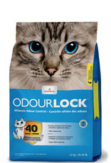 Intersand INTERSAND OdorLock Cat Litter