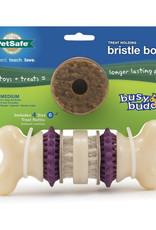 Petsafe PETSAFE Bristle Bone Dog Toy