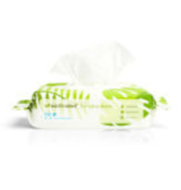 Earth Rated Earth Rated Wipes Unscented 100ct