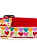 Up Country Pop Hearts Dog Collar