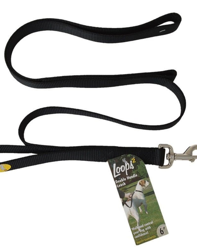 "COAST 1"" Double Handle Leash 6ft Dog"