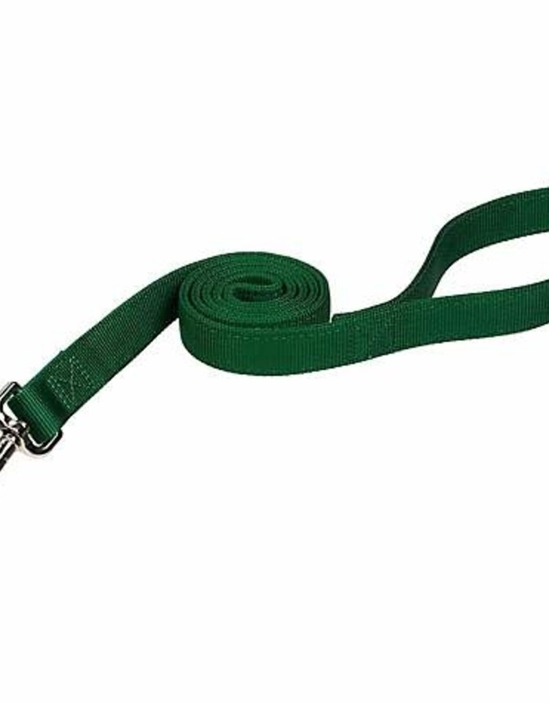 "COAST 1"" Leash 6ft Dog"