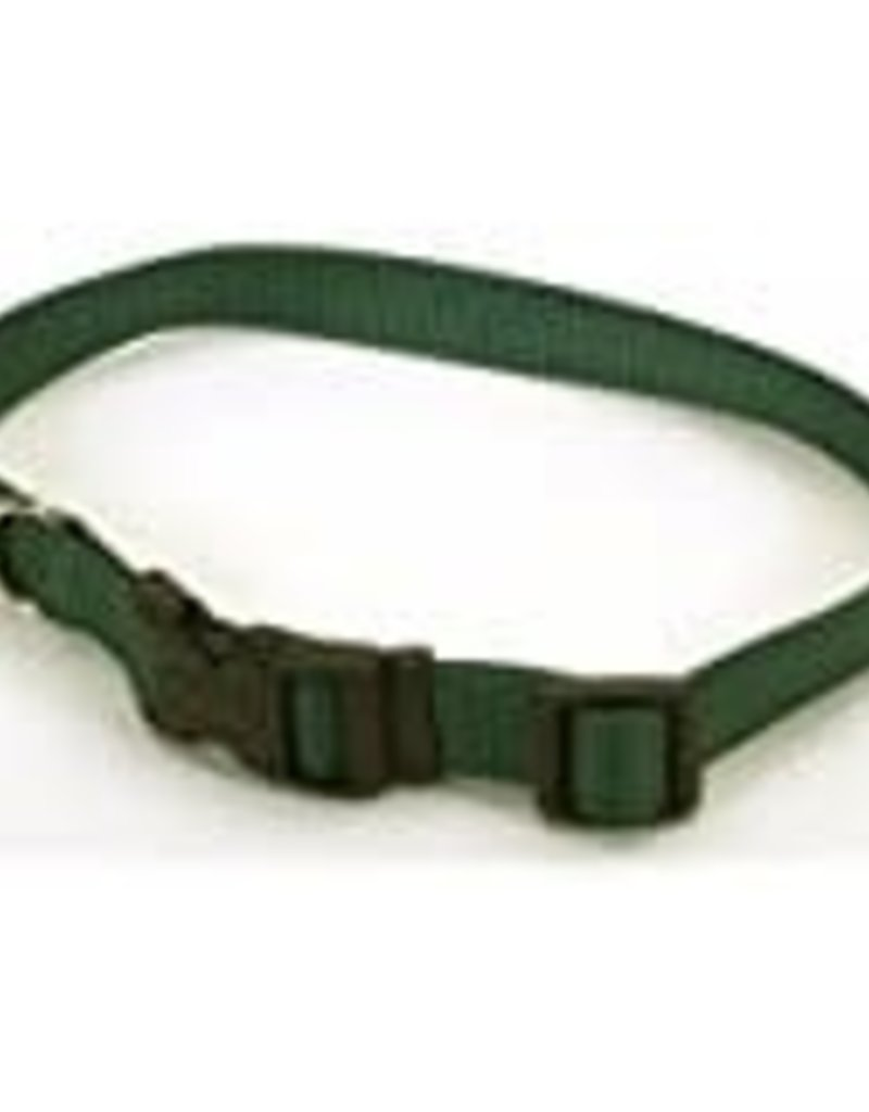 "Coastal Pet Products COAST 3/4"" Adj Collar Dog MD 14-20"""