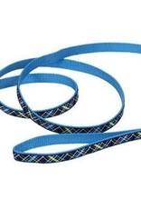 "Coastal Pet Products COAST 5/8"" Ribbon Leash 4ft Dog"